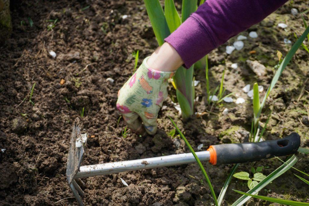 Garden Weeds - How Weed Killer Can Help